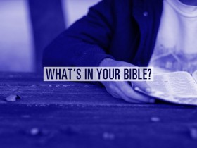 whats-in-your-bible