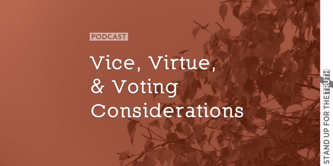 Vice, Virtue, and Voting Considerations