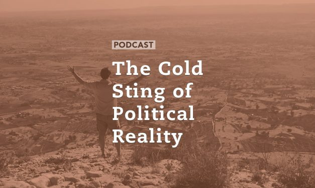 The Cold Sting of Political Reality