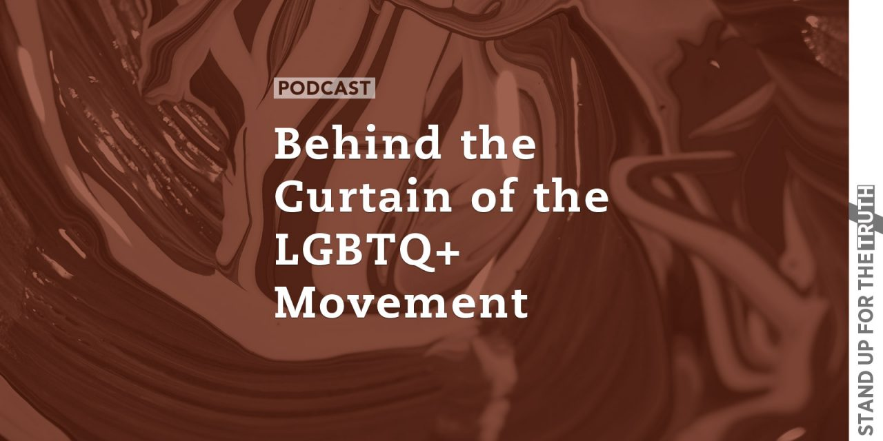 Behind the Curtain of the LGBTQ+ Movement