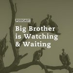 Big Brother is Watching and Waiting