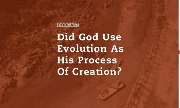 Did God Use Evolution as His Process of Creation?