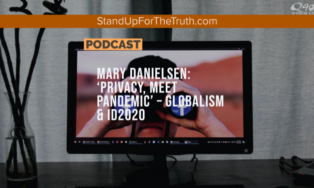 Mary Danielsen: 'Privacy, Meet Pandemic' – ID2020 & Government Solutions